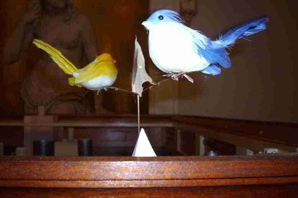 Revolving Birdsx960
